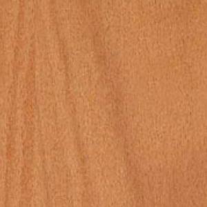 Textur vom Holz der Buche
