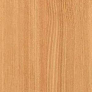 Textur vom Holz der Lärche