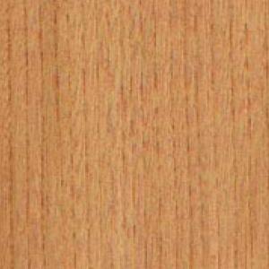 Textur vom Holz der Ulme