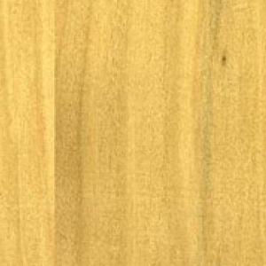 Textur vom Holz der Zypresse