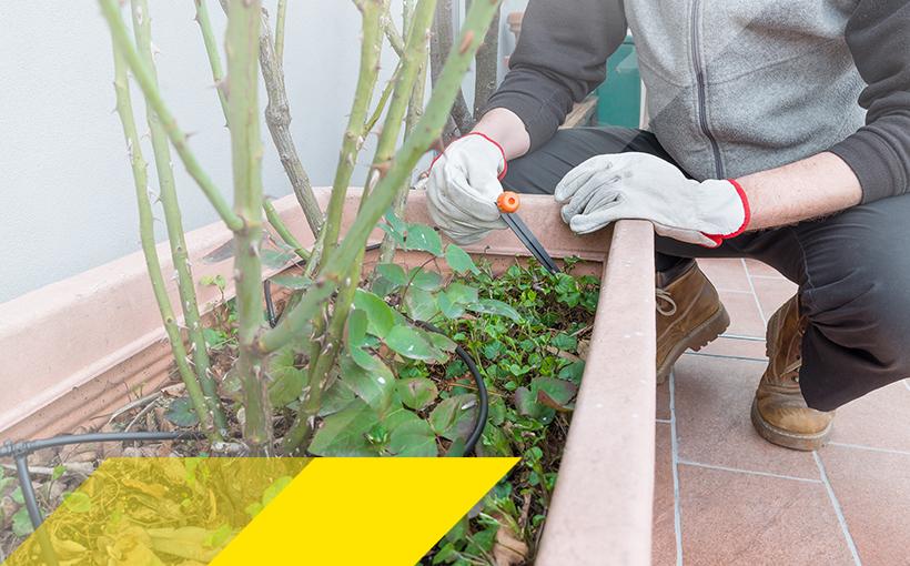Bewässerungssystem im Blumenkasten